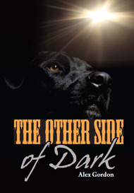 The_Other_Side_of_Dark (1).jpg